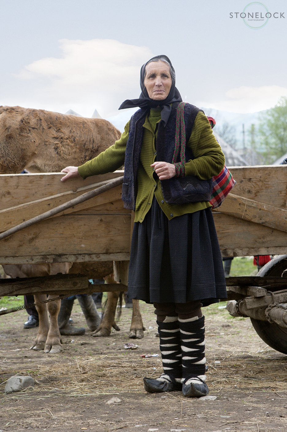 a lady in traditional Maramures dress stands by a horse cart at the Monday morning animal market, Bogdan Voda, Maramures, Romania,