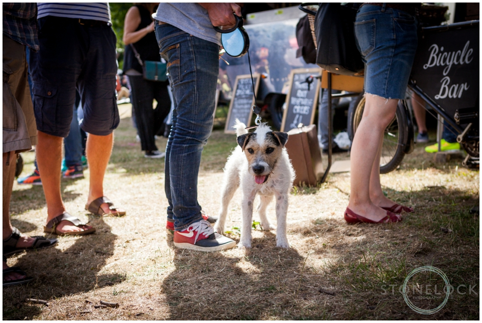 A dog waits in line at the bar as part of the Crystal Palace Overground Festival